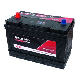 Batterie Dolphin PRO 108A