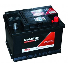 Batterie Dolphin PRO 60A